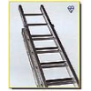 31' Double Ladder